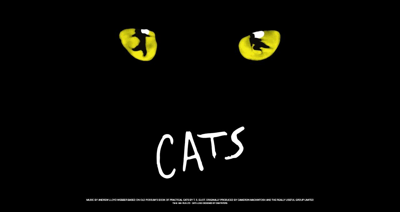 """Special – Musicalwochenende in Wien mit """"Cats"""" im Ronacher – Ersatztermin 05.-06.06.2021"""