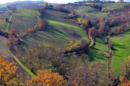 Genussreise Emilia Romagna