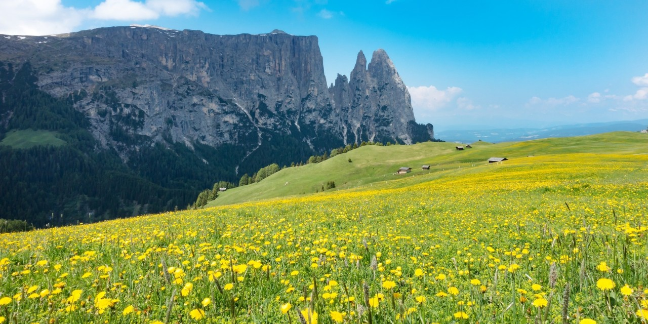 Seiser Alm und die Bergwelt der Dolomiten