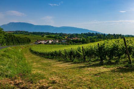 Muttertagsreise in die Prosecco Weinstrasse