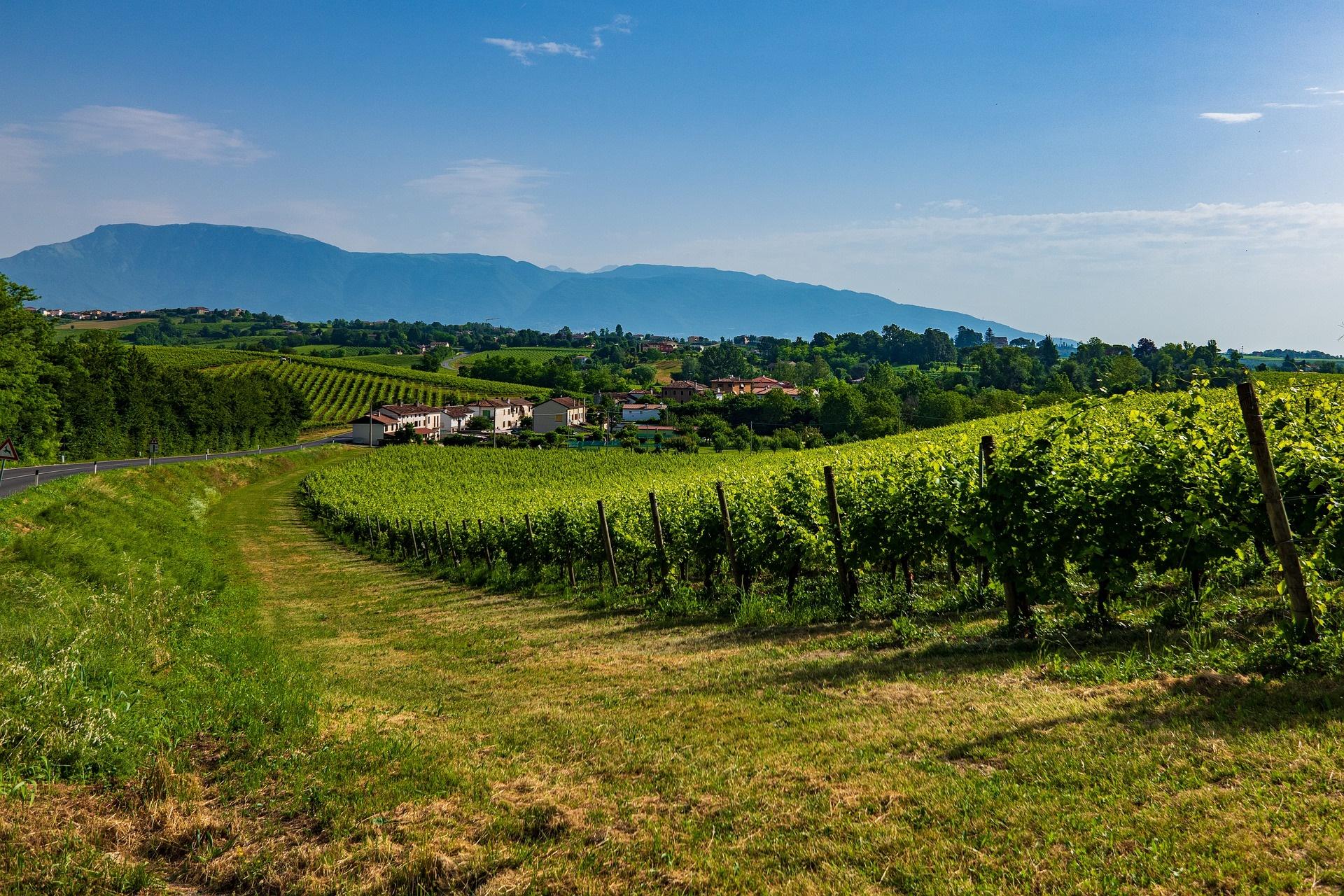 Muttertagsreise in die Prosecco Weinstrasse – abgesagt